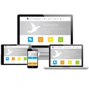 Concepteur de site e-commerce