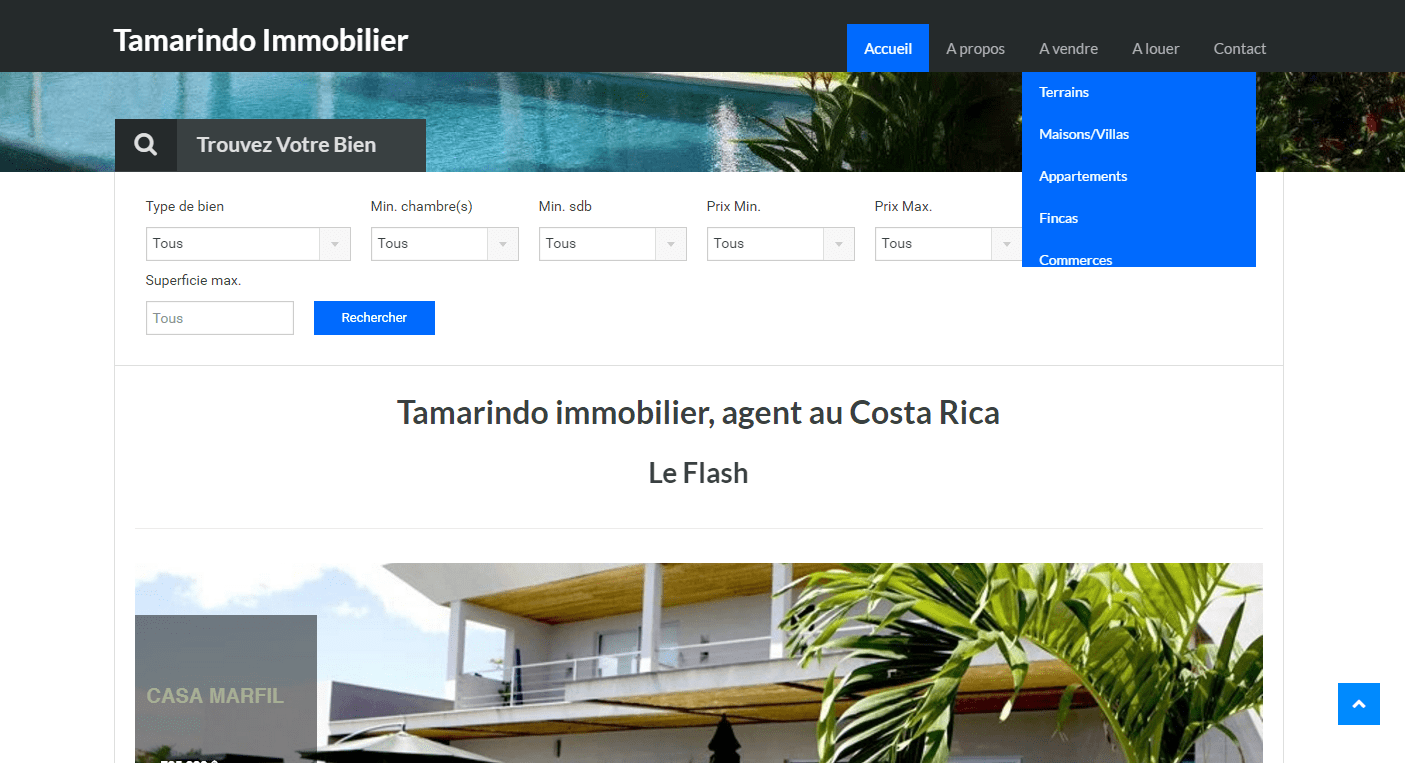 Tamarindo Immobilier
