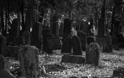 La Wallonie, un cimetière pour le freelance du Web ?